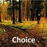 10 Choice 95x95