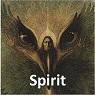 12 Spirit 95x95