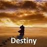 8 Destiny 95x95